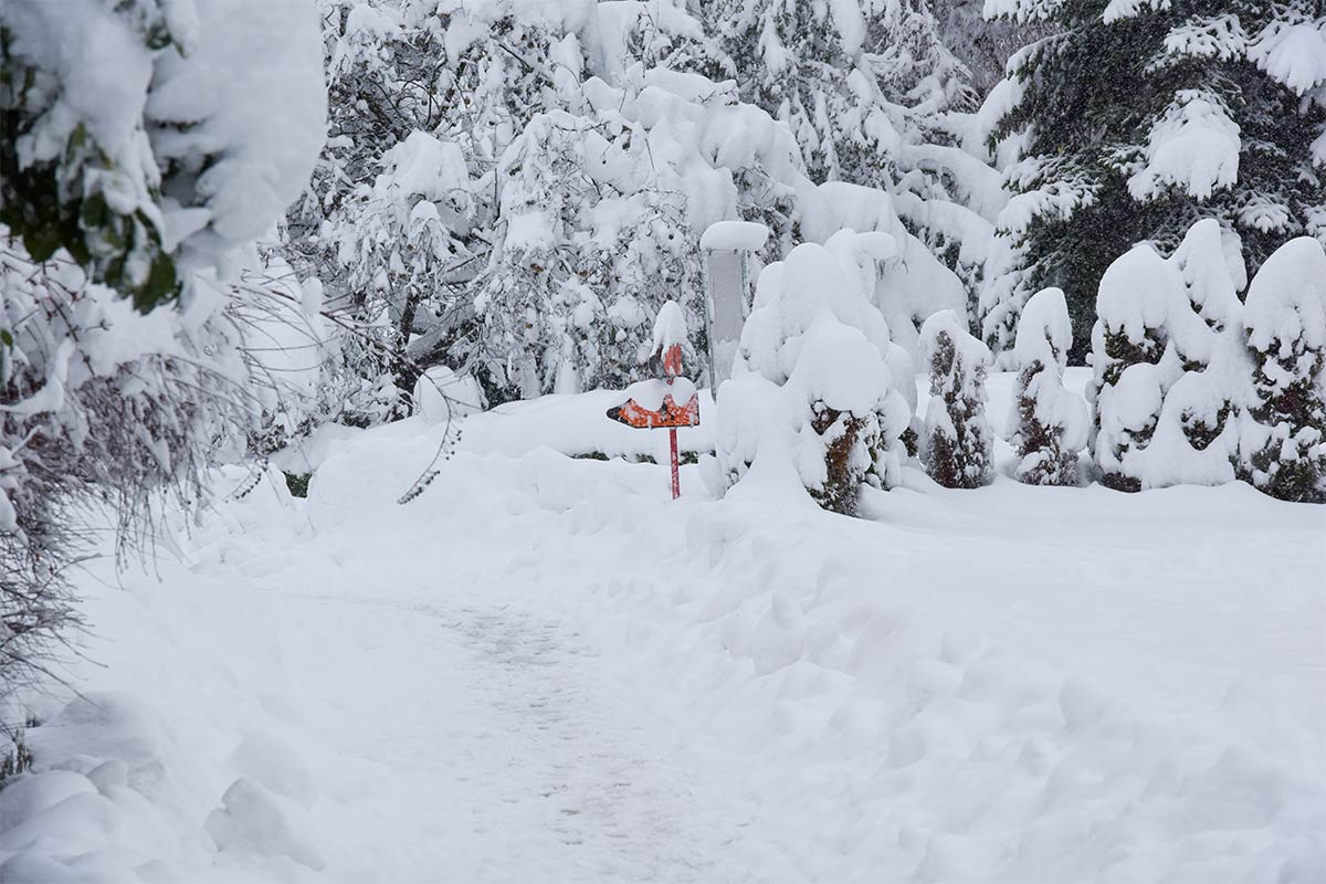 Schnee sorgt für viel Betrieb