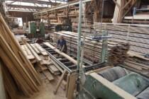 Sprunghafte Nachfrage nach Holz